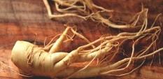 Жен-шен – енергия директно от корена