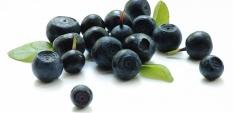 Супер плодът - Акай бери