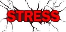 Искате мускулна маса? Премахнете стреса
