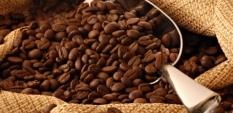 Здравословни ползи от сутрешното кафе
