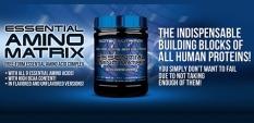 Новата Essential Amino Matrix от Scitec Nutrition