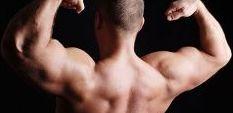 10 мита относно изграждането на мускулна маса