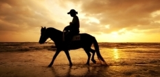 Езда - спорт за ценители