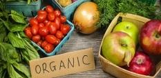 Биологична храна – какво е това?