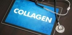 Колаген – какво е това?