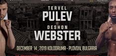 Тервел Пулев се изправя в 12-рундов мач срещу ДеШон Уебстър (САЩ)